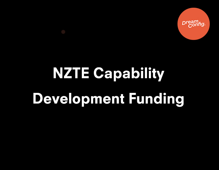 NZTE Business Capability Development Funding